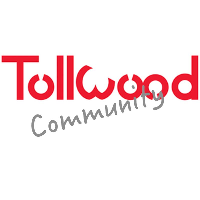 winter tollwood 2015